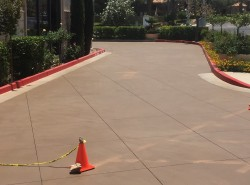 Commercial concrete driveway staining and sealing